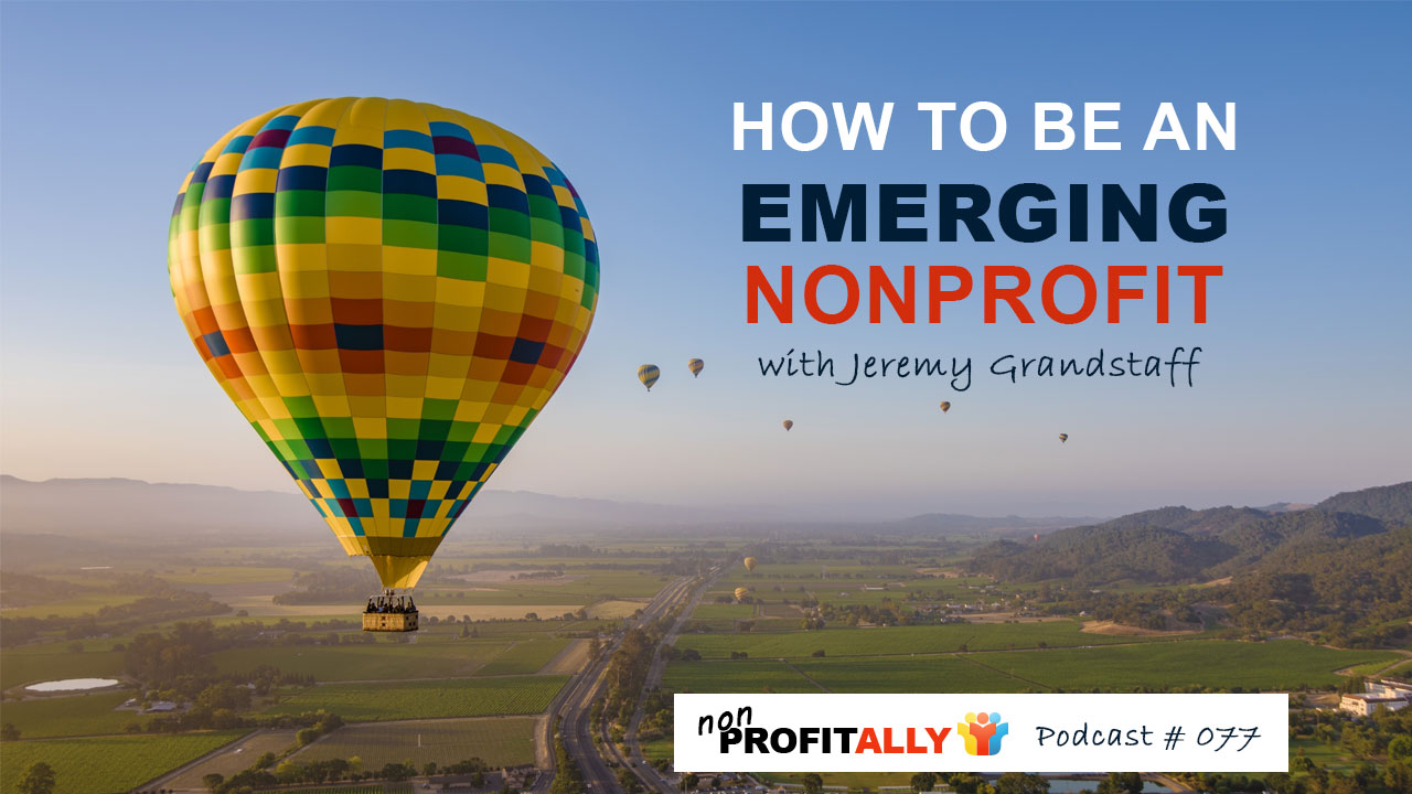 how to be an emerging nonprofit